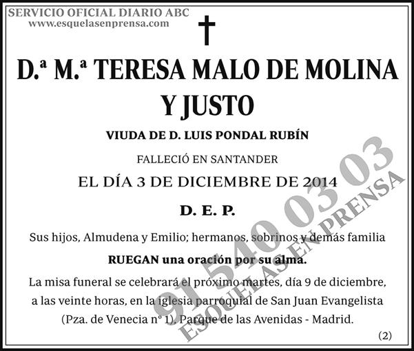 M.ª Teresa Malo de Molina y Justo